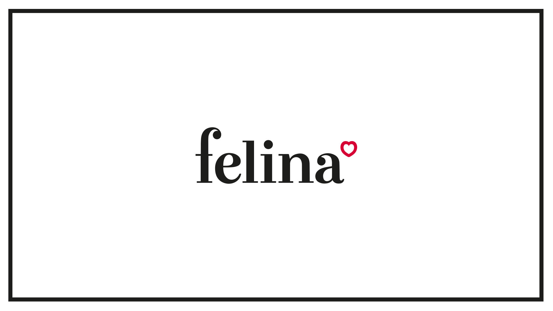 Felina Identity Design Circle Branding Vietnam