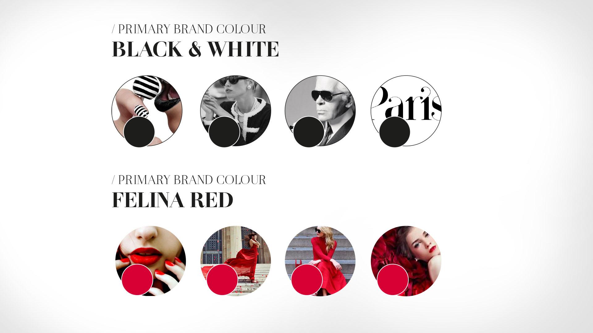 Felina Brand Book Circle Branding Vietnam