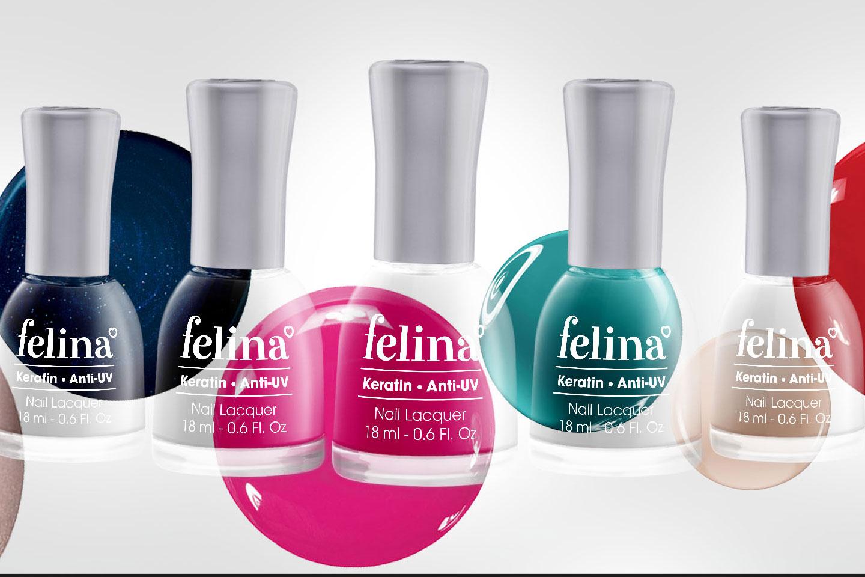 Felina Brand Identity Circle Branding Vietnam